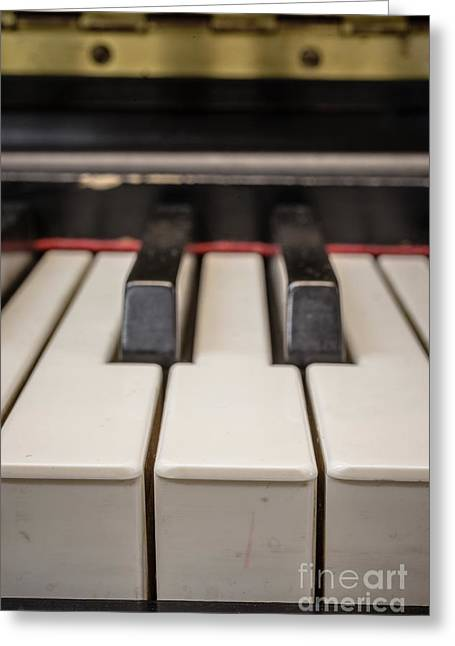 Close Up Of Keys On A Piano Greeting Card