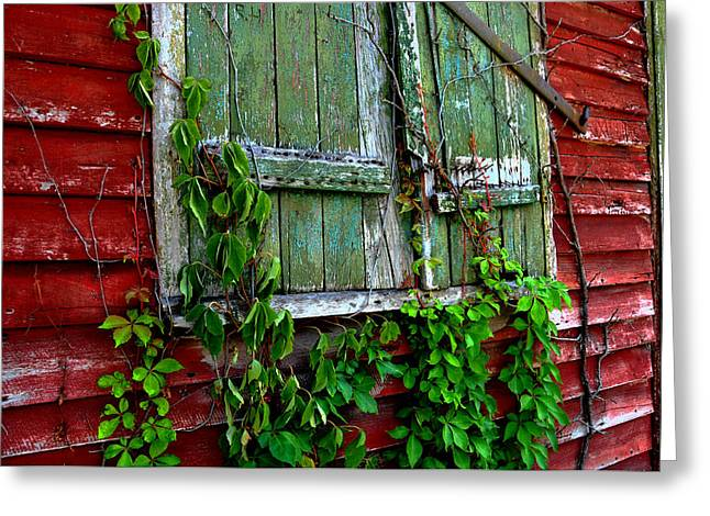 Closed For The Summer Greeting Card by Lyle  Huisken