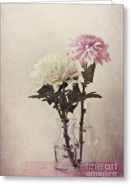 Best Sellers -  - Glass Vase Greeting Cards - Closely Greeting Card by Priska Wettstein