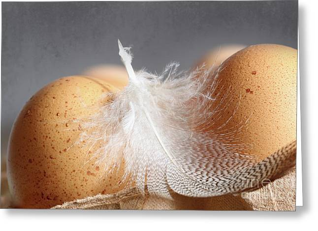Closeup Of Brown Speckled Eggs  Greeting Card by Sandra Cunningham