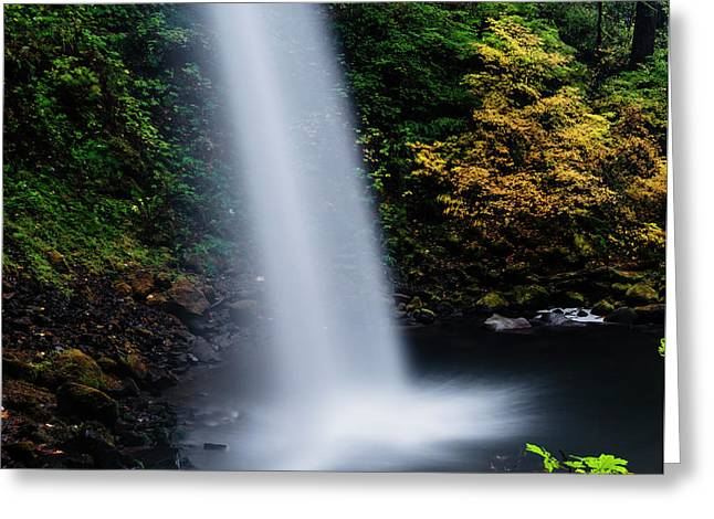 Closeup View Of Pony Tail Falls In Autumn Greeting Card by Vishwanath Bhat