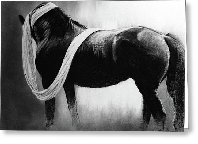 Cloth And Velvet - Friesian Greeting Card by Susie Gordon