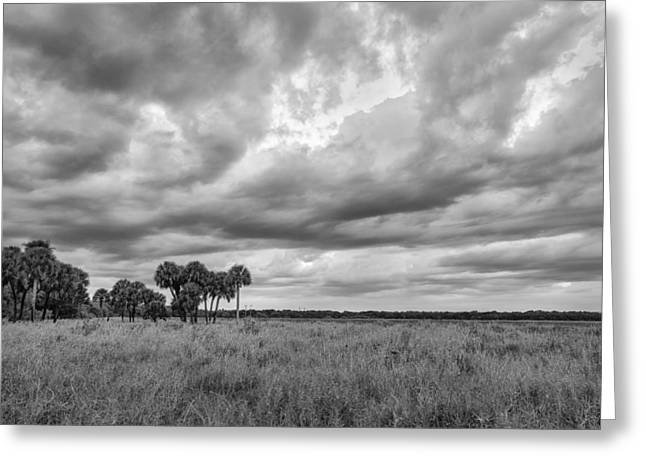 Cloud Collective Greeting Card by Jon Glaser