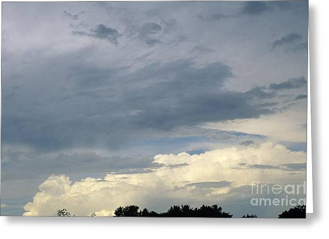 Cloud Cover Greeting Card by Erin Paul Donovan