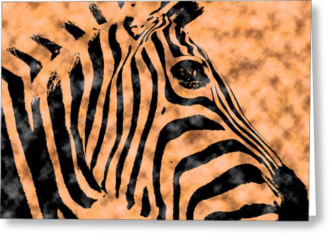 Cloud Face Zebra Greeting Card by Bartz Johnson