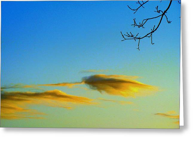 Cloud Heron Greeting Card