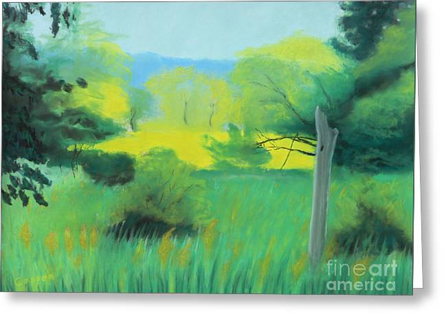 Greeting Card featuring the painting Cloud Shadow And Summer Sun by Robert Coppen