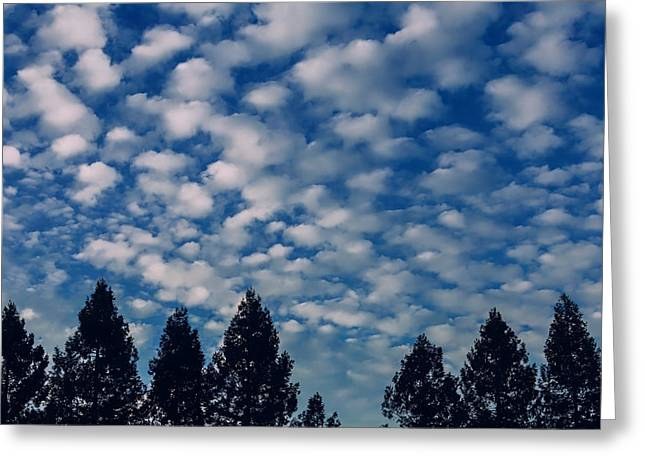 Clouds Above The Tree Line Greeting Card
