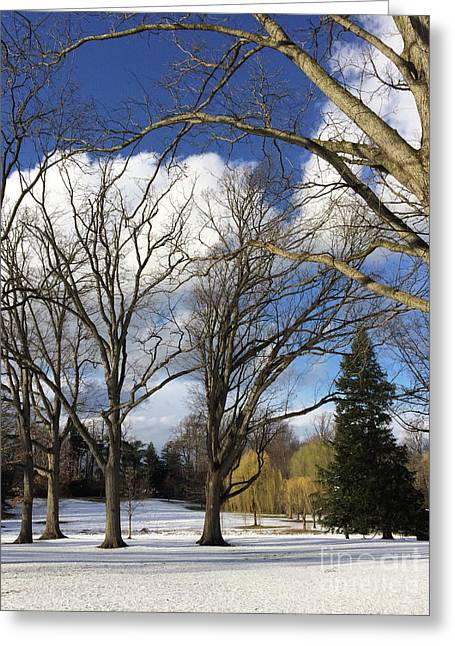Clouds For Leaves Snow For Grass Greeting Card