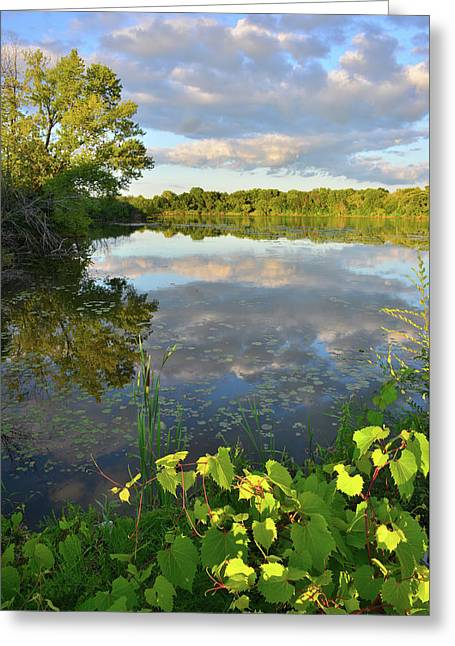 Clouds Mirrored In Snug Harbor Greeting Card