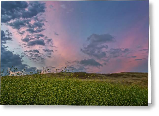 Clouds Over Mustard At Sunset Greeting Card by Marc Crumpler