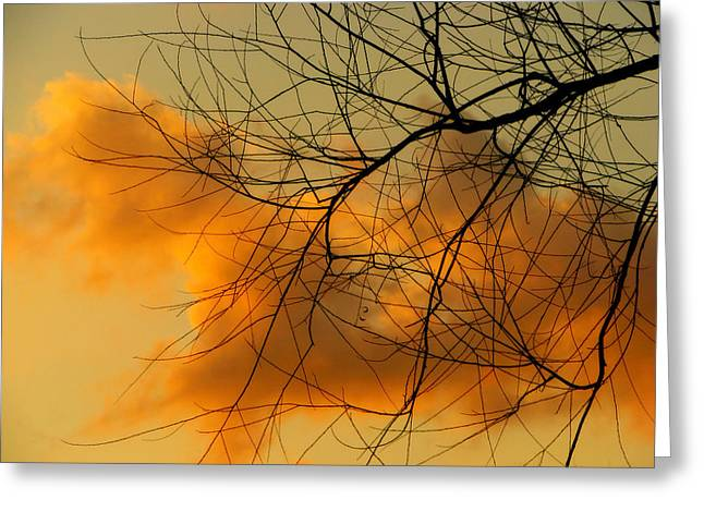 Cloudy Silhouette Greeting Card by Dottie Dees