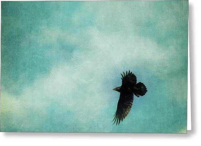 Cloudy Spring Sky With A Soaring Raven  Greeting Card