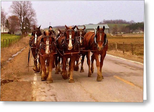 Clydesdale Amish Plow Team Greeting Card by Chris Flees