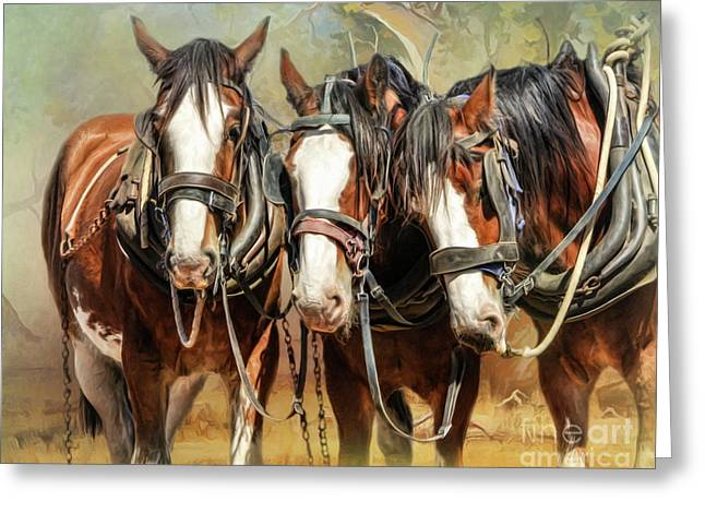 Clydesdale Conversation Greeting Card