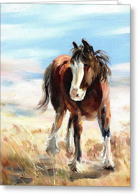Clydesdale Foal Greeting Card