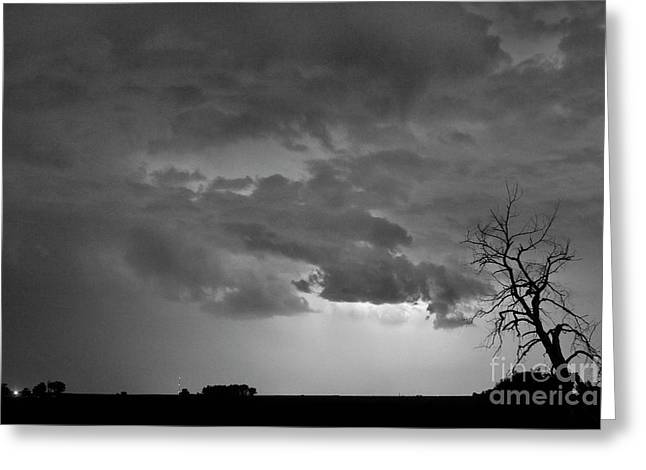 Co Cloud To Cloud Lightning Thunderstorm 27 Bw Greeting Card by James BO  Insogna