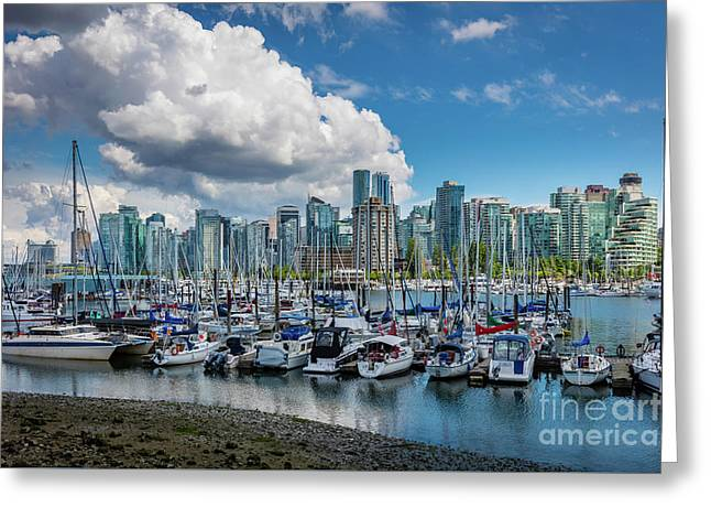 Coal Harbor Boats Greeting Card by Inge Johnsson