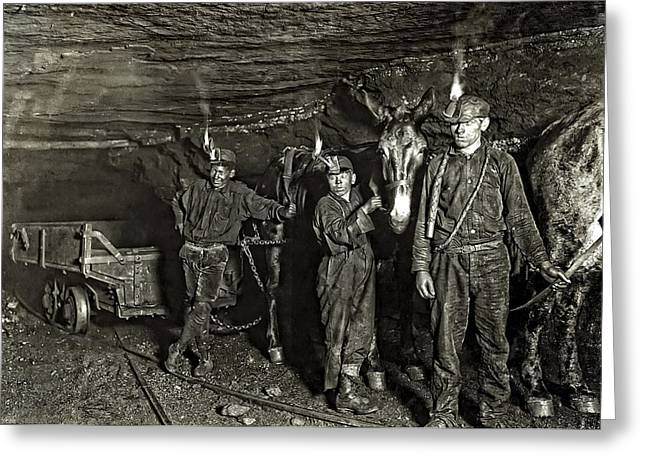 Coal Mine Mule Drivers  1908 Greeting Card by Daniel Hagerman
