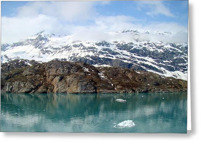 Coastal Beauty Of Alaska 5 Greeting Card by Richard Rosenshein