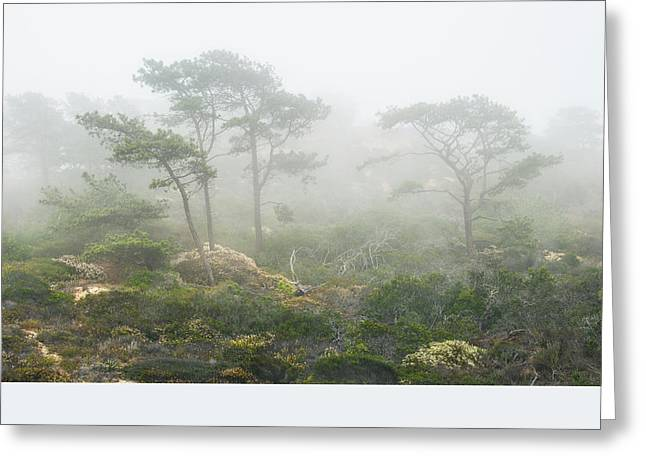 Coastal Fog Greeting Card by Joseph Smith