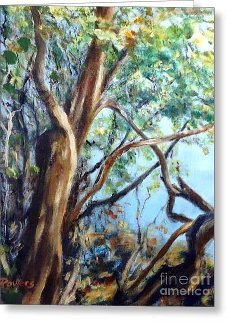 Coastal Forest Greeting Card by Mary Lynne Powers