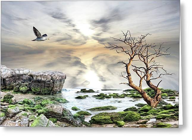 Greeting Card featuring the photograph Coastal Landscape  by Angel Jesus De la Fuente