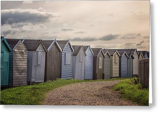 Coastal Path Greeting Card by Martin Newman