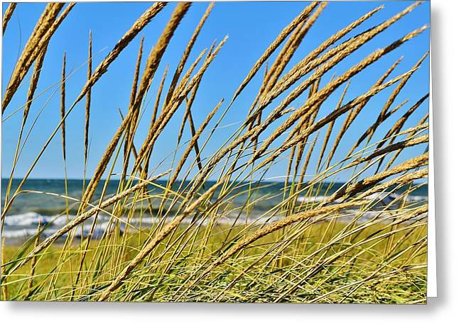 Coastal Relaxation Greeting Card