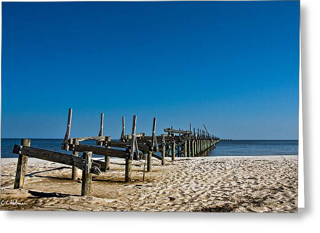 Coastal Remains Greeting Card by Christopher Holmes