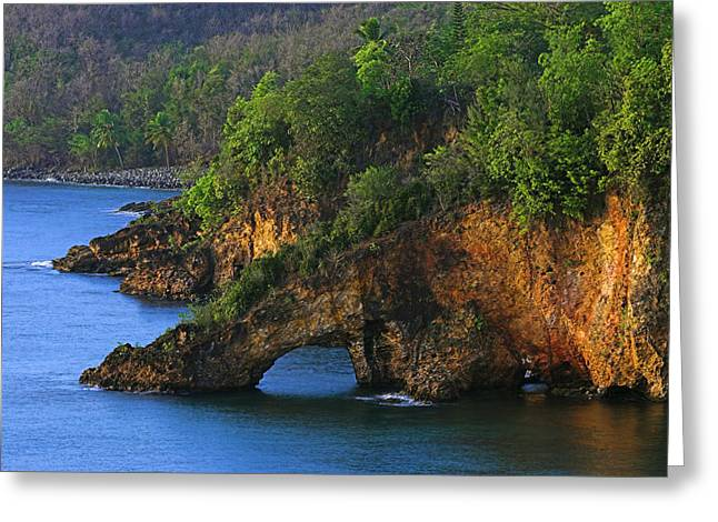 Coastline-ciceron- St Lucia Greeting Card by Chester Williams