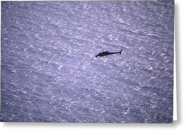 Coastline Flight Greeting Card by Soli Deo Gloria Wilderness And Wildlife Photography