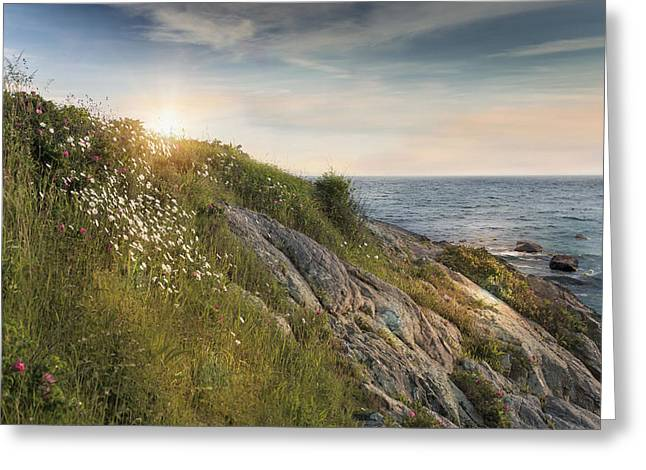 Coastline Newport Greeting Card