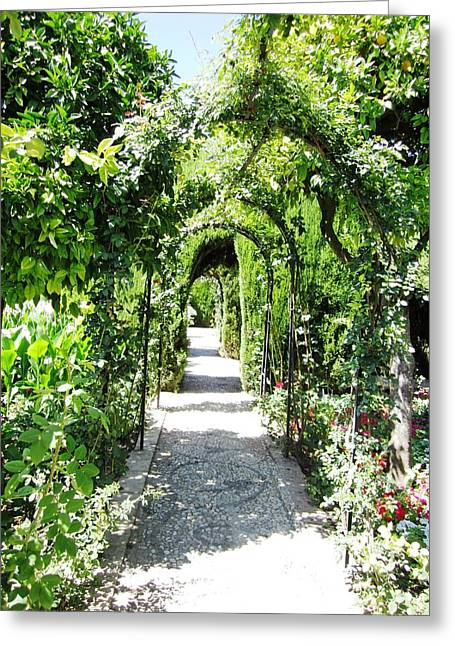 Cobble Stone Garden Walkway In Spain Greeting Card
