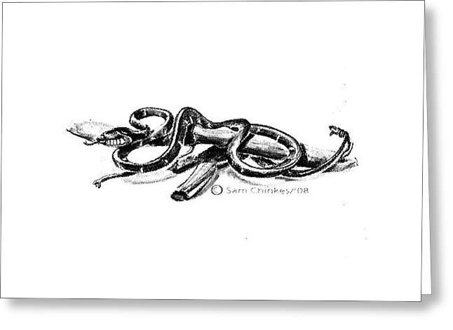 Cobra Greeting Card by Sam Chinkes