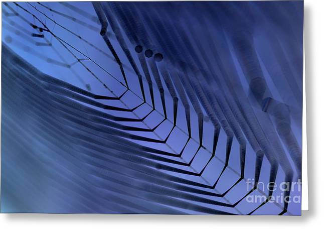 Cobweb Greeting Card by Michal Boubin