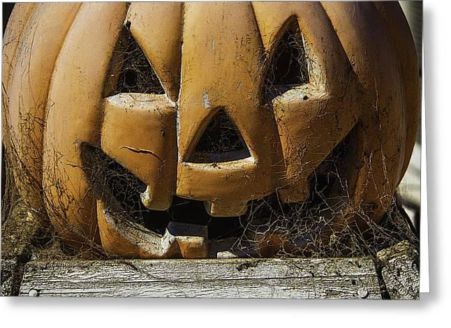 Cobweb Pumpkin Greeting Card by Garry Gay