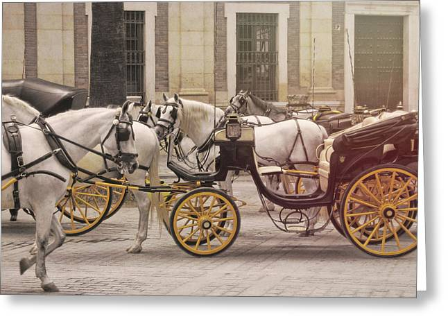 Coche De Caballos Greeting Card by JAMART Photography