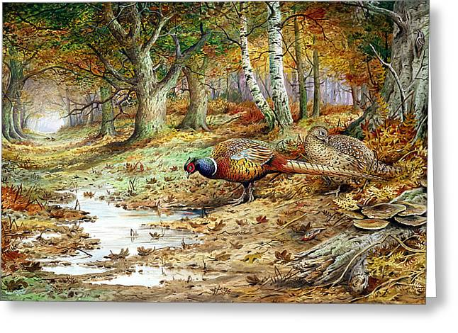 Cock Pheasant And Sulphur Tuft Fungi Greeting Card by Carl Donner