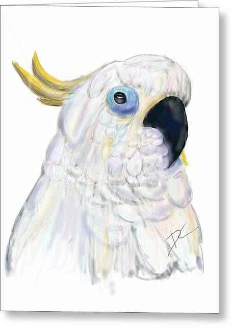 Cockatoo Australia Greeting Card by Darren Cannell