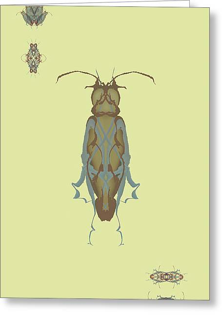 Cockroach Specimen Greeting Card