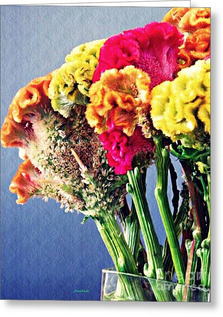 Greeting Card featuring the photograph Cockscomb Bouquet 2 by Sarah Loft