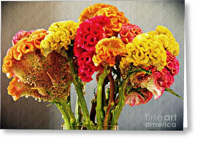 Greeting Card featuring the photograph Cockscomb Bouquet 3 by Sarah Loft