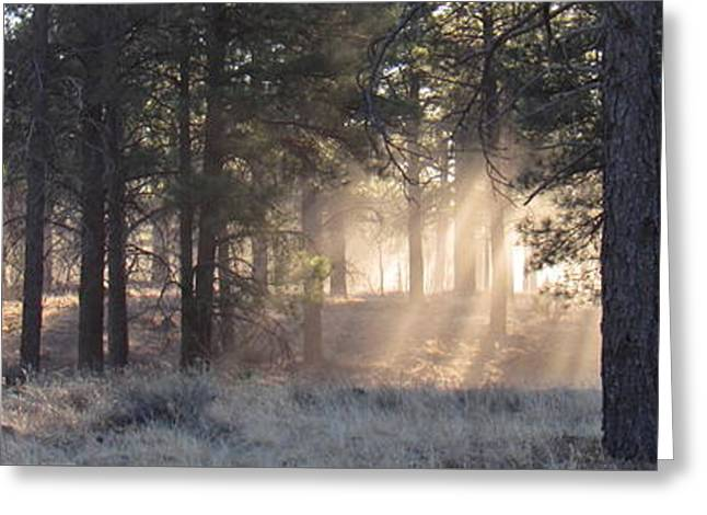 Coconino Dawn Greeting Card