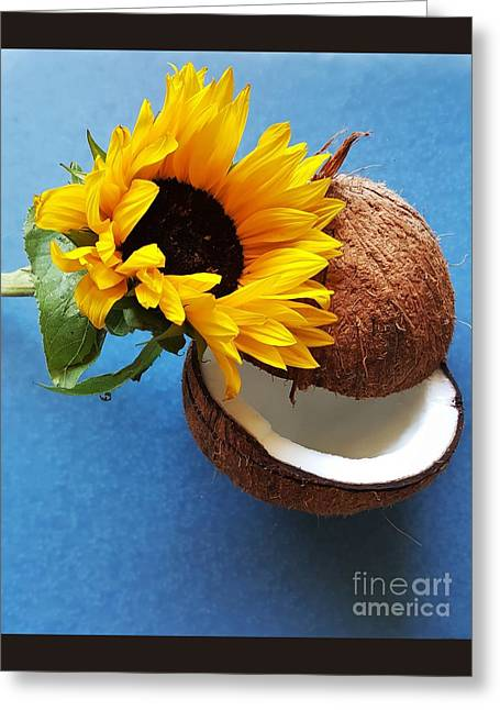 Coconut And Sunflower Harmony Greeting Card by Jasna Gopic