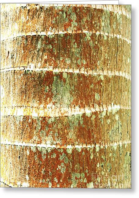 Coconut Palm Bark 2 Greeting Card by Brandon Tabiolo - Printscapes