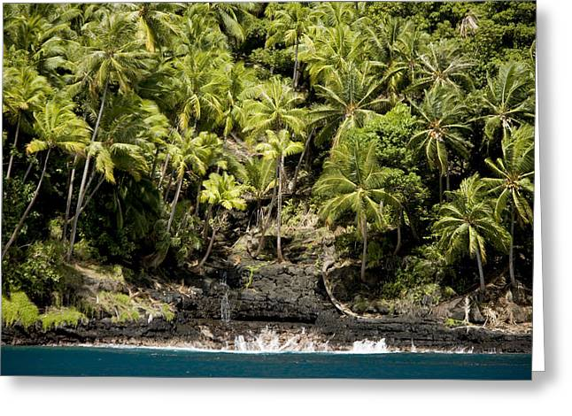 Coconut Palm Covered Hillsides In Bay Greeting Card