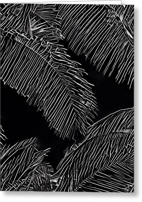Coconut Palms In Black And White Greeting Card