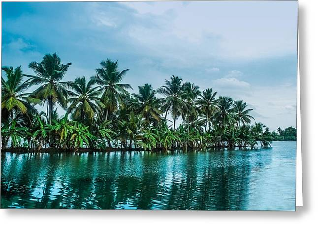 Coconut Trees Reflection At Backwaters Of Kerala, India Greeting Card by Art Spectrum