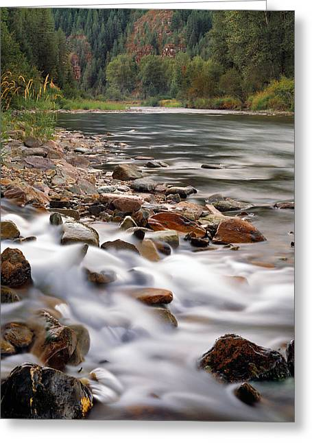Coeur D'alene River Greeting Card by Leland D Howard